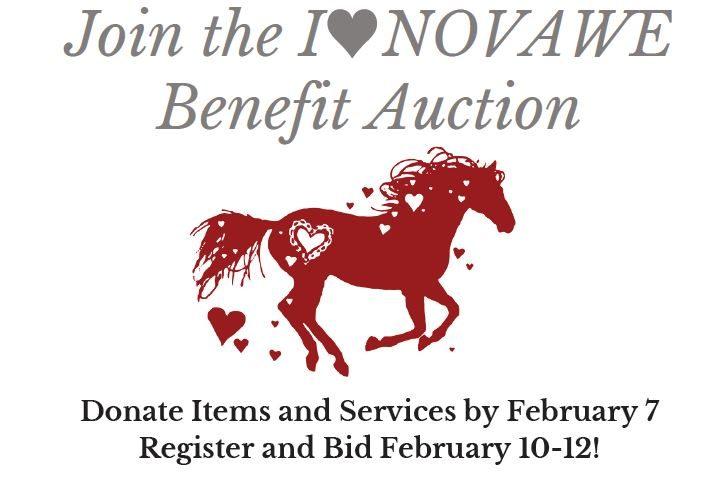 I Love NOVAWE Benefit Auction