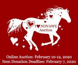 NOVAWE Benefit Auction