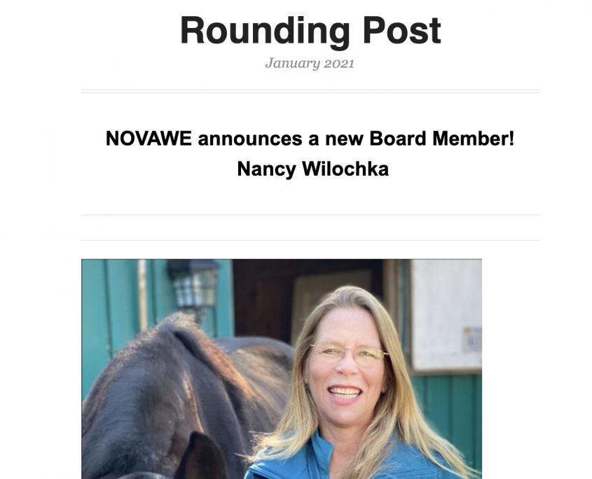 NOVAWE rounding post newsletter January 2021
